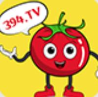 394tv番茄直播